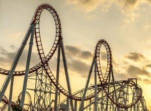 entrepreneur's rollercoaster